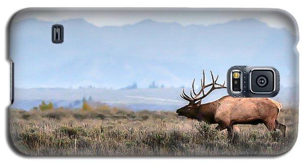 Elk Crossing Galaxy S5 Case