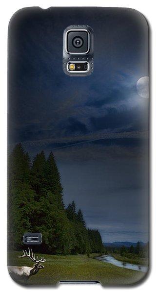 Elk Under A Full Moon Galaxy S5 Case by Belinda Greb