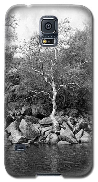 Galaxy S5 Case featuring the photograph Elm Tree Kern River by Hugh Smith