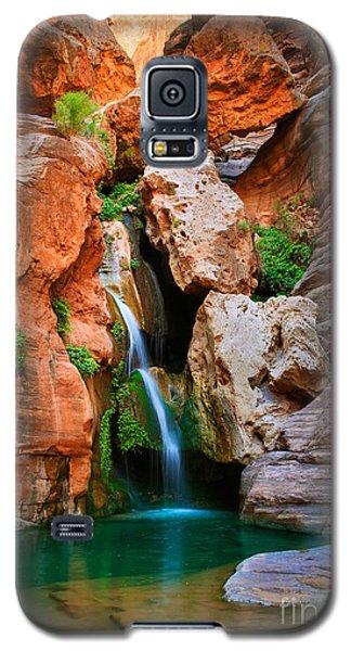 Elves Chasm Galaxy S5 Case