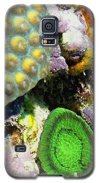 Emerald Artichoke Coral Galaxy S5 Case by Amy McDaniel