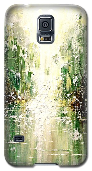 Emerald City Falls Galaxy S5 Case
