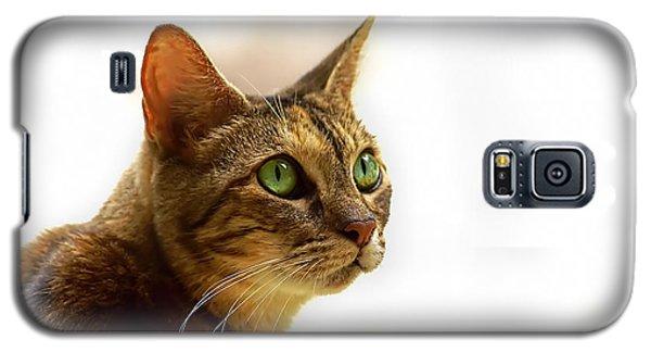 Galaxy S5 Case featuring the photograph Emerald Eyes by Olga Hamilton