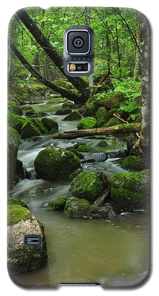Emerald Forest Galaxy S5 Case