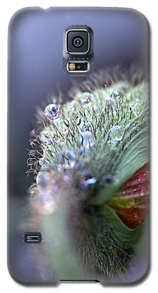 Galaxy S5 Case featuring the photograph Emergence by Joe Schofield