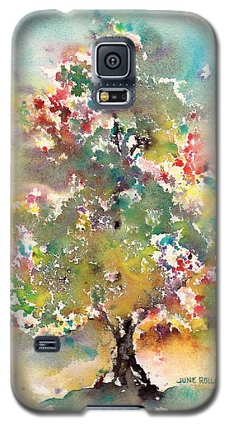 Emerging Galaxy S5 Case