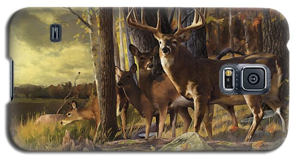 Eminence At The Forest Edge Galaxy S5 Case