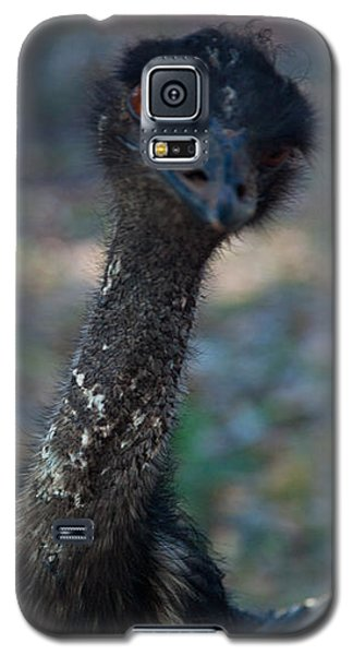 Galaxy S5 Case featuring the photograph Emu by Carole Hinding