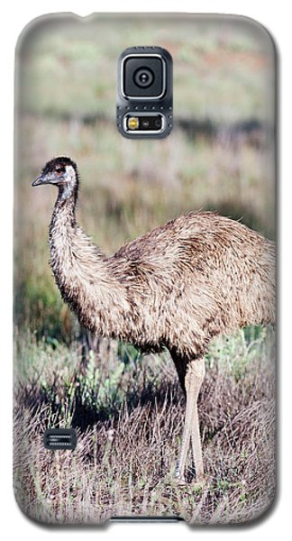 Emu (dromaius Novaehollandiae Galaxy S5 Case