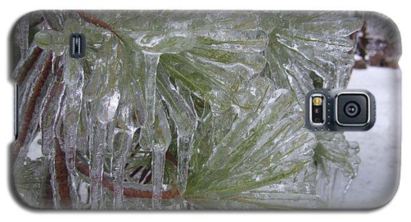 Encased In Ice Galaxy S5 Case by Deborah DeLaBarre
