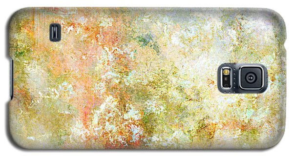 Enchanted Blossoms - Abstract Art Galaxy S5 Case