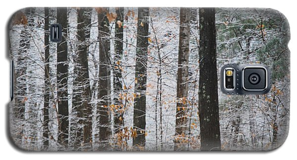 Enchanted Forest Galaxy S5 Case by Linda Segerson
