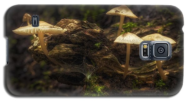 Spider Galaxy S5 Case - Enchanted Forest by Scott Norris