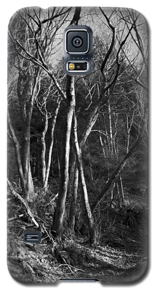Galaxy S5 Case featuring the photograph Enchanted Forest by Yulia Kazansky