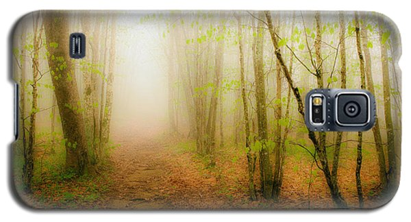 Enchanted Forests Of The Blue Ridge II Galaxy S5 Case