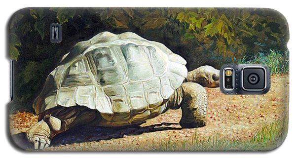 Galaxy S5 Case featuring the painting Enchanted Turtle's Terrific Journey by Svitozar Nenyuk