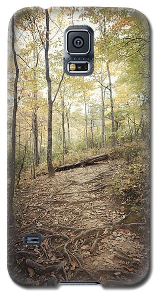 Enchanting Forest Galaxy S5 Case by Debbie Karnes