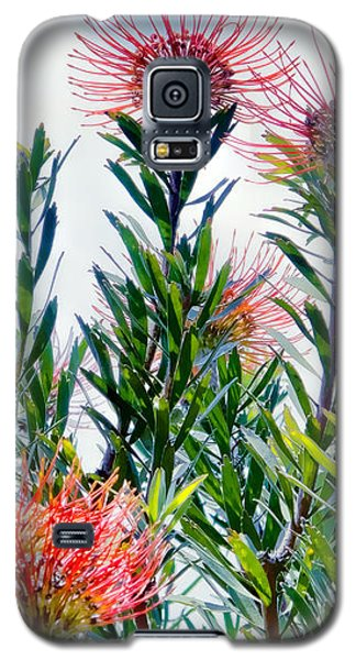 Enchanting Gardens 42 Galaxy S5 Case
