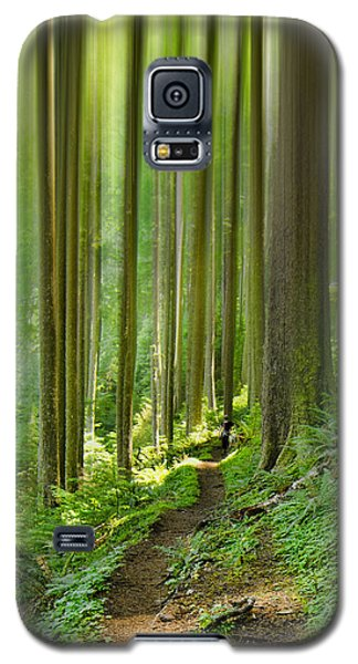 Enchantment Galaxy S5 Case by Don Schwartz