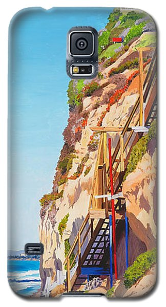 Seagull Galaxy S5 Case - Encinitas Beach Cliffs by Mary Helmreich