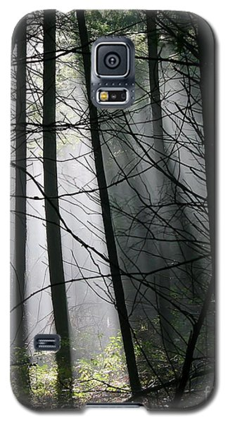 Encounters Of The Vermont Kind  Galaxy S5 Case
