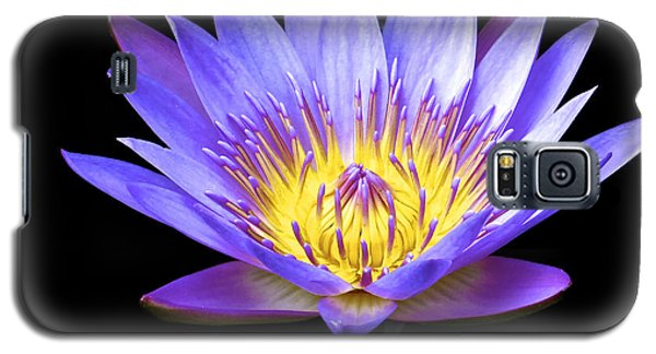 End Of Summer Bloom Galaxy S5 Case