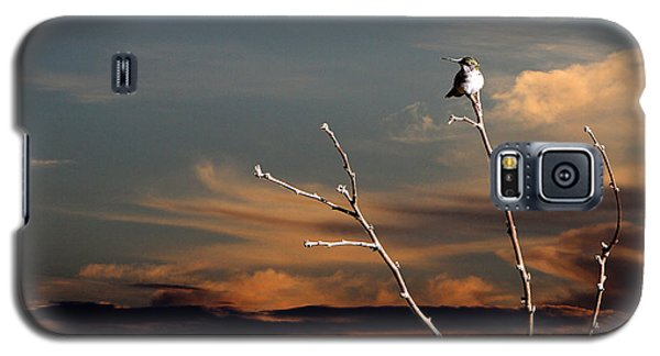 Galaxy S5 Case featuring the photograph End Of The Day by John Freidenberg