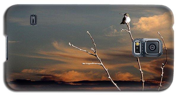 End Of The Day Galaxy S5 Case by John Freidenberg