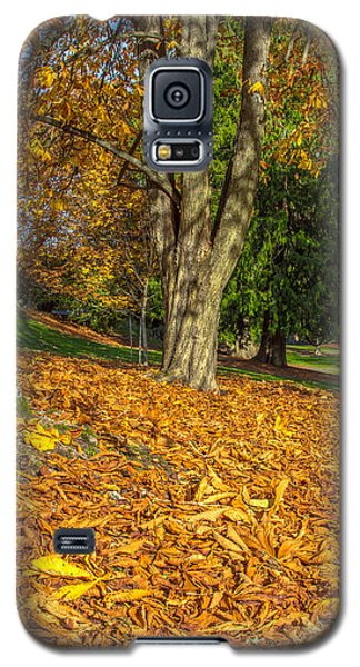 Ending Of Fall Galaxy S5 Case by Bob Noble Photography