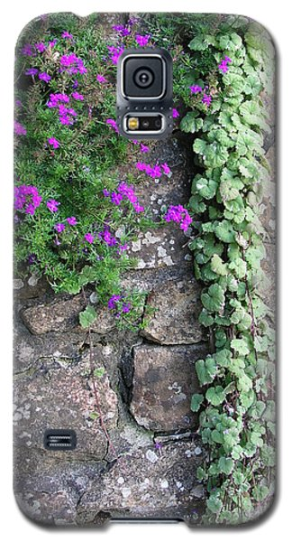 English Garden Wall Galaxy S5 Case
