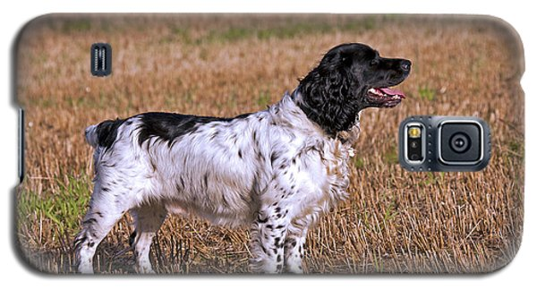 Galaxy S5 Case featuring the photograph English Springer Spaniel by Paul Scoullar