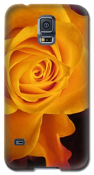 Enjoy Galaxy S5 Case