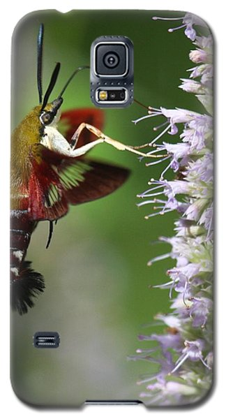 Galaxy S5 Case featuring the photograph Enjoying The Flowers by Myrna Bradshaw
