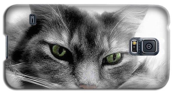 Ennui Galaxy S5 Case by Louise Kumpf