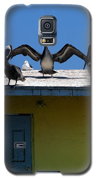 Ensenada Harbour And Fish Market 34 Galaxy S5 Case