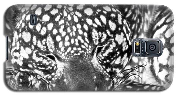 Entering The Dream Realm Galaxy S5 Case