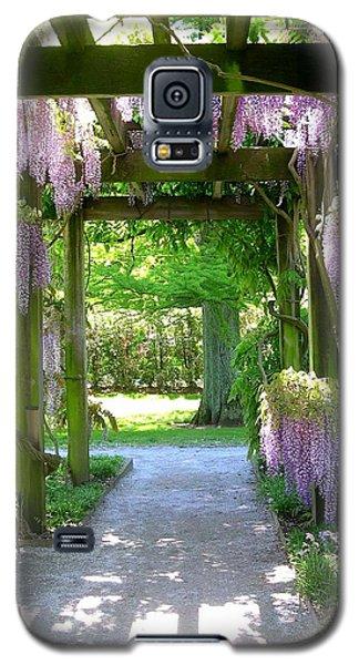 Entranceway To Fantasyland Galaxy S5 Case
