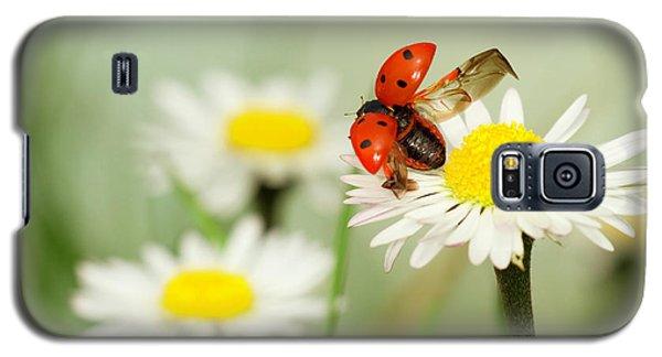 Ladybug Galaxy S5 Case - Envole Moi by Fabien Bravin