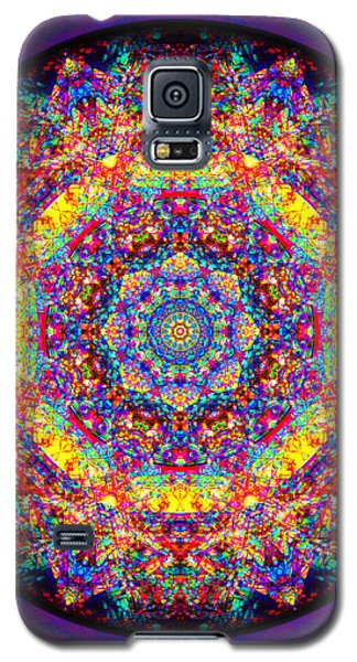 Galaxy S5 Case featuring the painting Equanimity by Jalai Lama