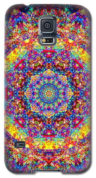 Equanimity Galaxy S5 Case