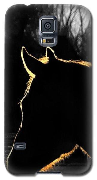Equine Glow Galaxy S5 Case