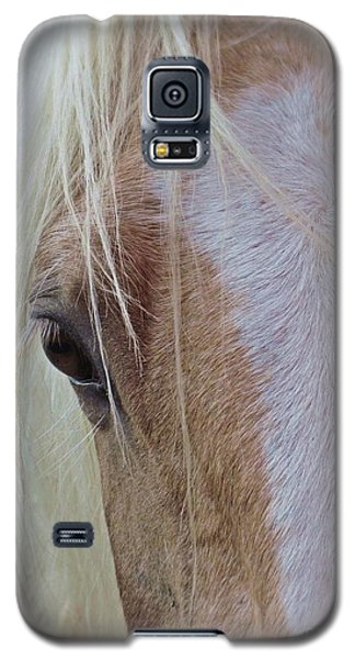 Equine Head Study Galaxy S5 Case by Laurinda Bowling