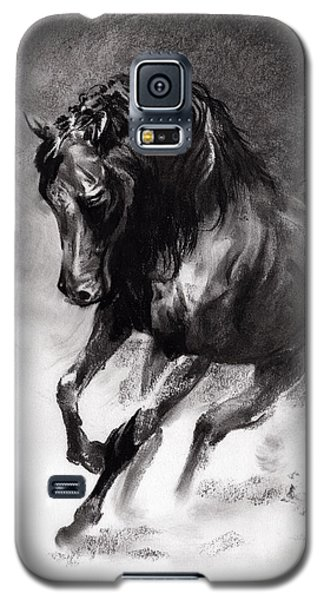 Equine Galaxy S5 Case