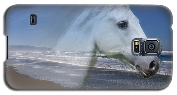 Equine Shores Galaxy S5 Case by Athena Mckinzie