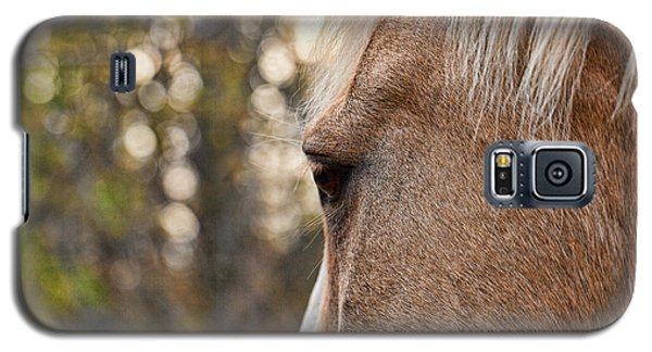 Equine Study 5 Galaxy S5 Case by Laurinda Bowling