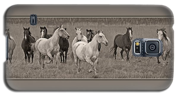 Galaxy S5 Case featuring the photograph Escapees From A Lineup D8056 by Wes and Dotty Weber