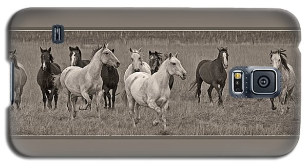 Escapees From A Lineup Galaxy S5 Case by Wes and Dotty Weber