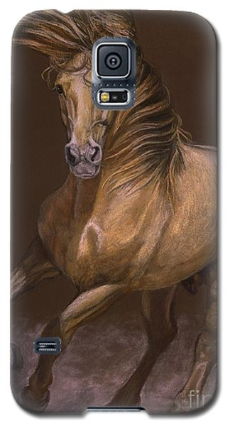 Galaxy S5 Case featuring the painting Espiritu Espanol by Sheri Gordon