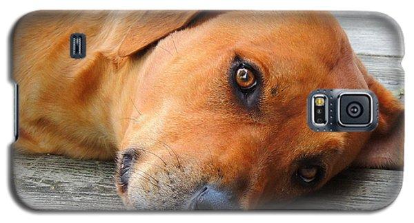 Essentia Galaxy S5 Case