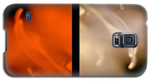 Essential Galaxy S5 Case